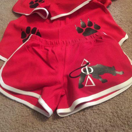 Delta Phi Delta Shorts